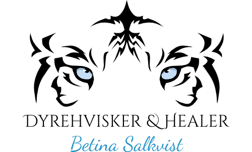 Dyrehvisker Betina Salkvist - animal communication DK